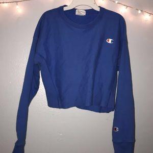 champion sweatshirt (self-cropped)